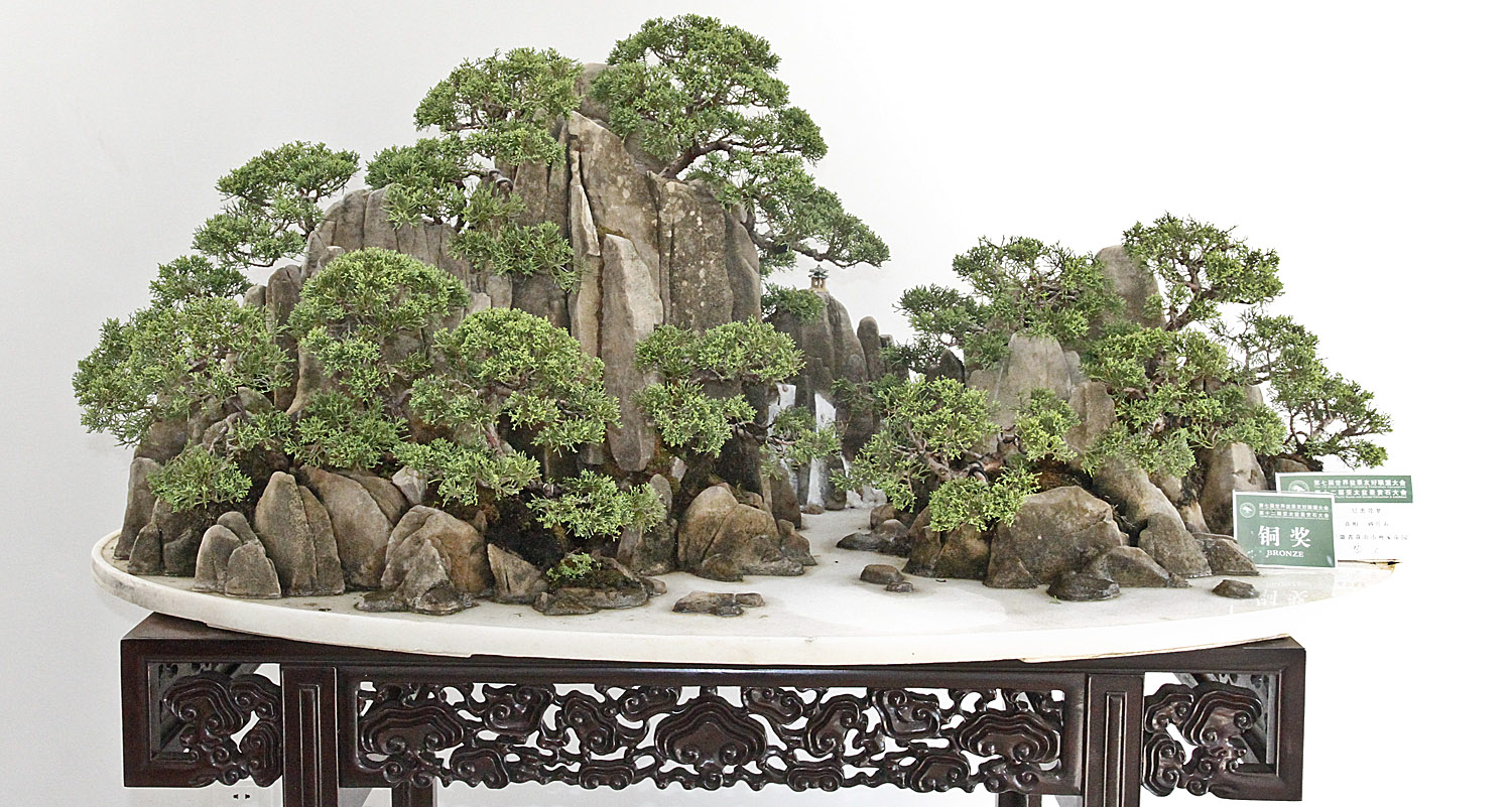 Suthin Was Particularly Pleased To See Two Small Rooms Filled With Shoo In  Bonsai, Several With Unusual Shaped Display Box Stands.