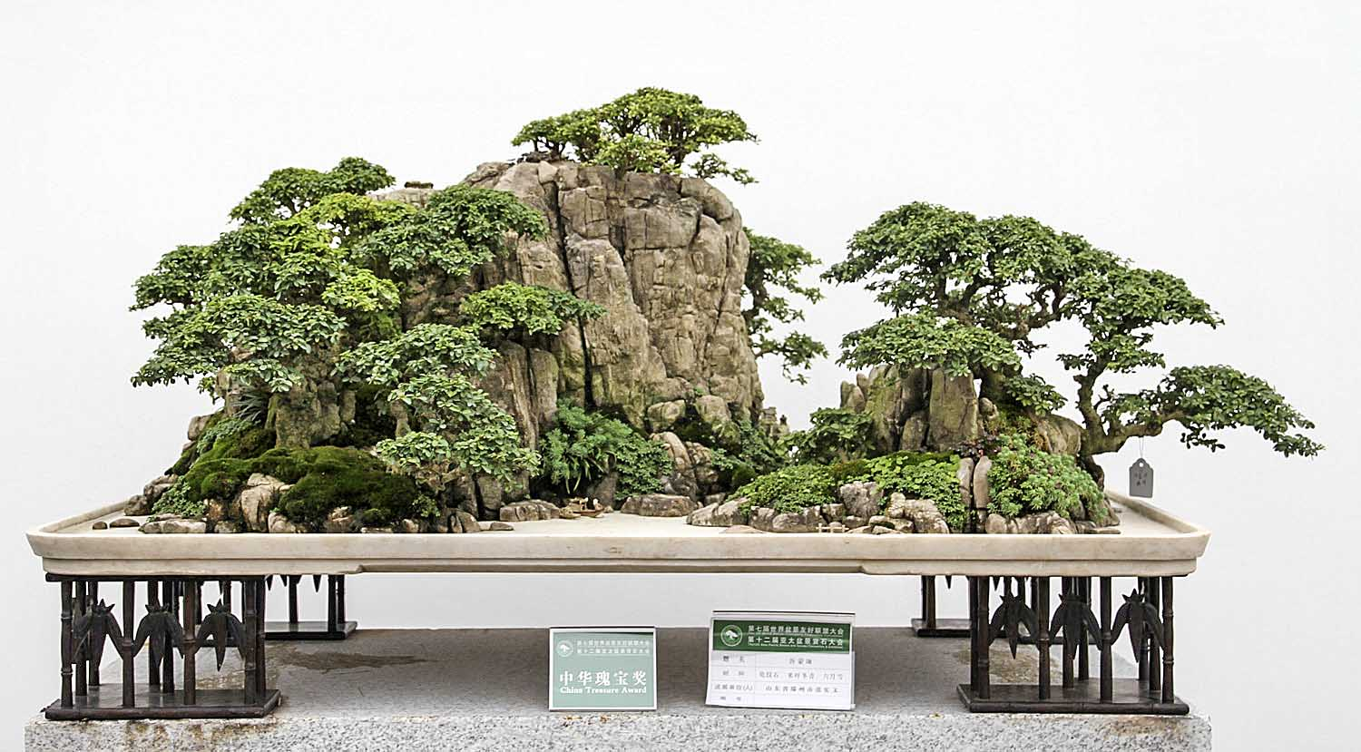 world bonsai friendship federation convention part 1