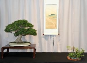 30 SHISHIGASHIRA