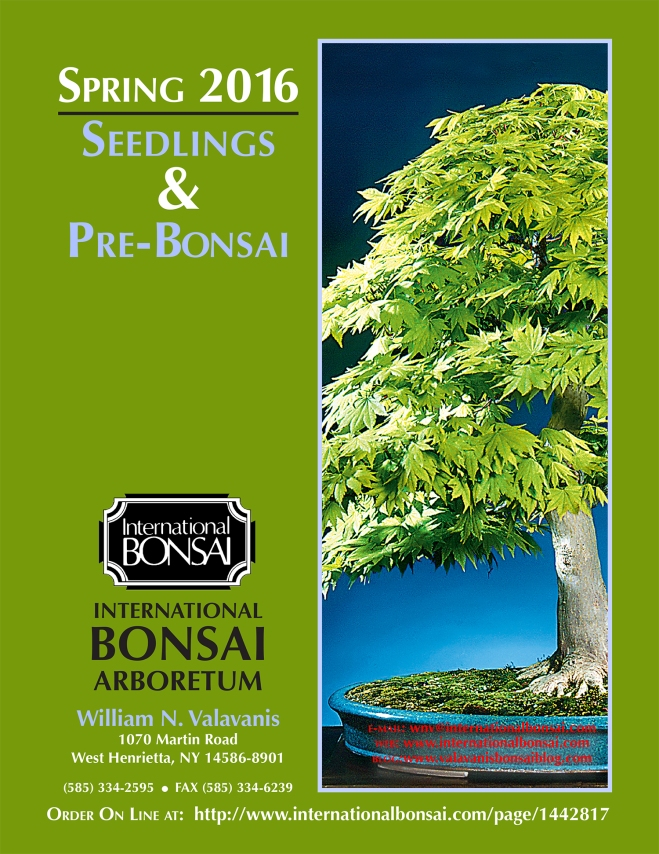 SEEDLING COVER
