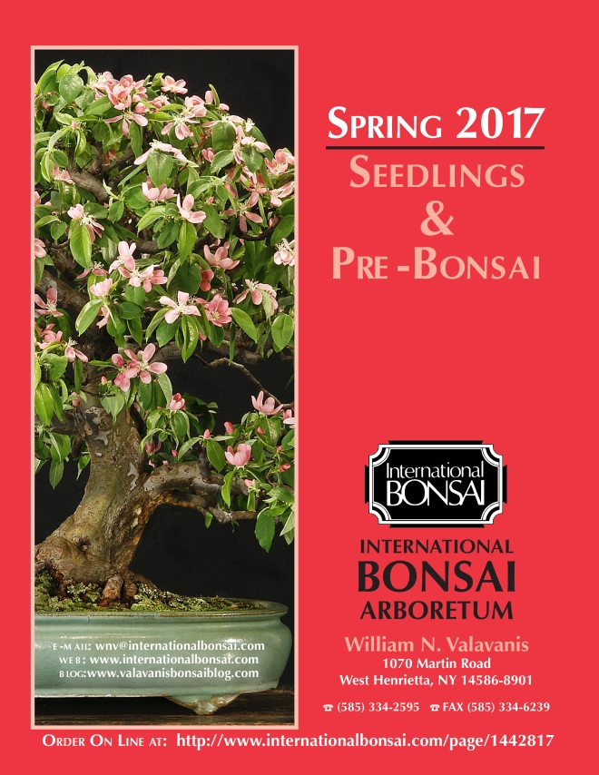 2017-seedling-catalog-cover