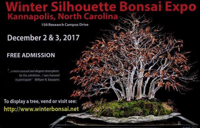 WINTER SILHOUETTE EXPO AD.JPG