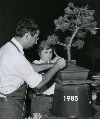 CORIN 1985