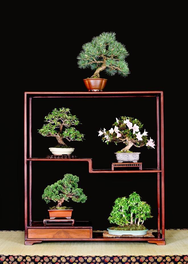 TREE 61-4945